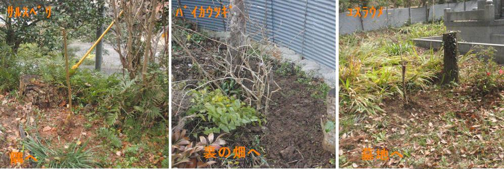 f:id:chuumeikun:20191217184215j:plain