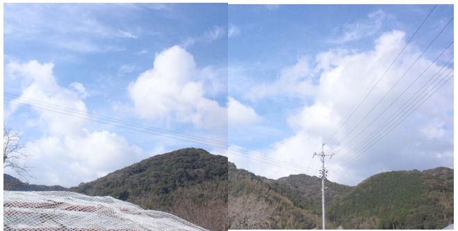 f:id:chuumeikun:20191224190921j:plain