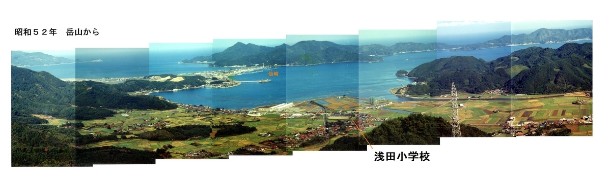 f:id:chuumeikun:20200126233520j:plain
