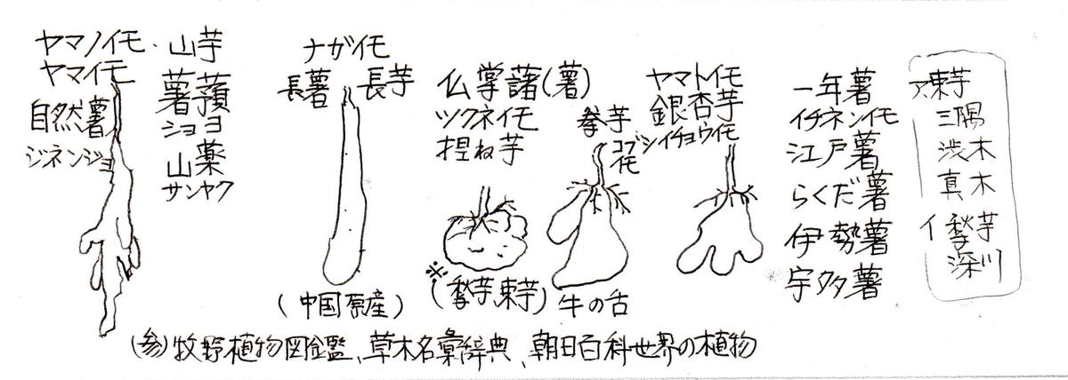 f:id:chuumeikun:20200526070427j:plain