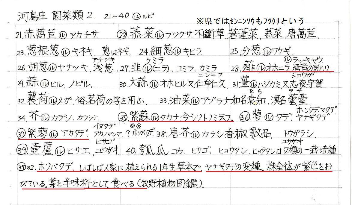 f:id:chuumeikun:20200526070514j:plain