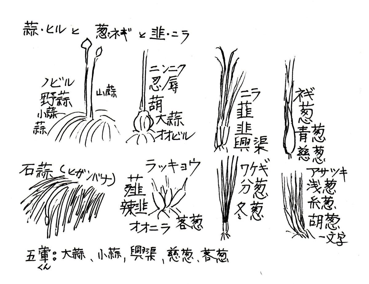 f:id:chuumeikun:20200526070606j:plain
