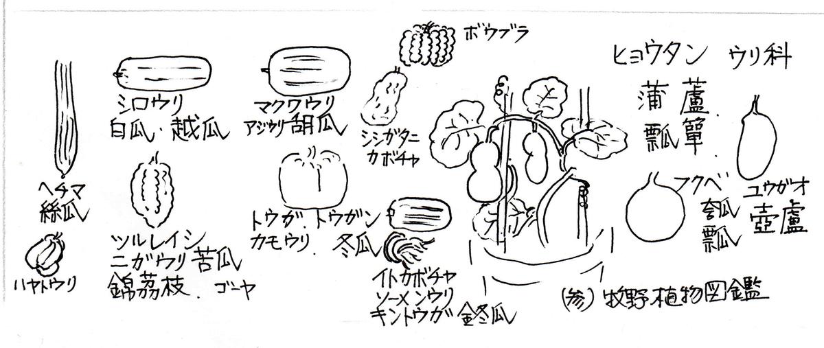 f:id:chuumeikun:20200526070643j:plain