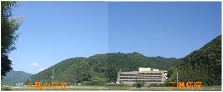 f:id:chuumeikun:20200616200723j:plain