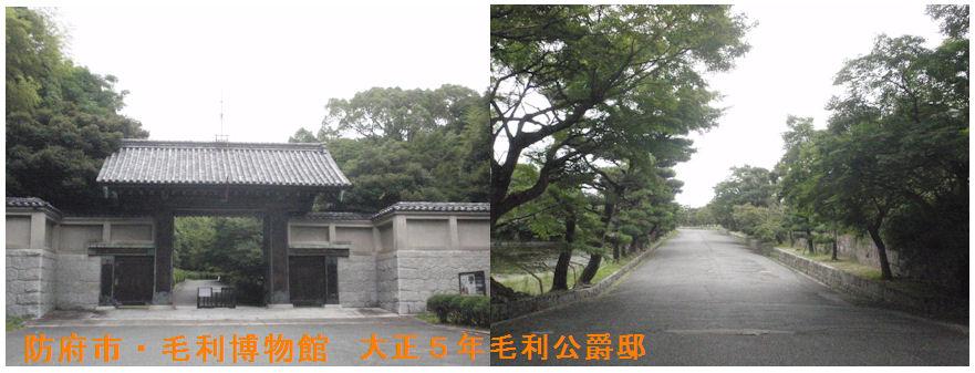 f:id:chuumeikun:20200706165040j:plain