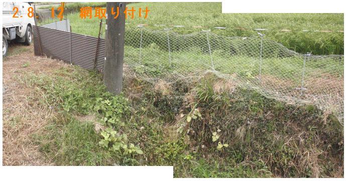 f:id:chuumeikun:20200813184639j:plain