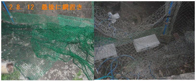 f:id:chuumeikun:20200813185419j:plain