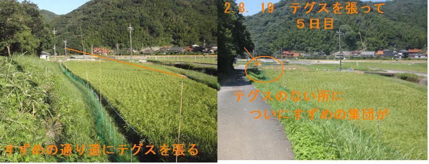 f:id:chuumeikun:20200819221621j:plain
