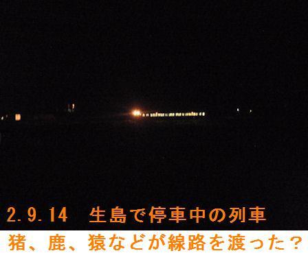 f:id:chuumeikun:20200915215602j:plain