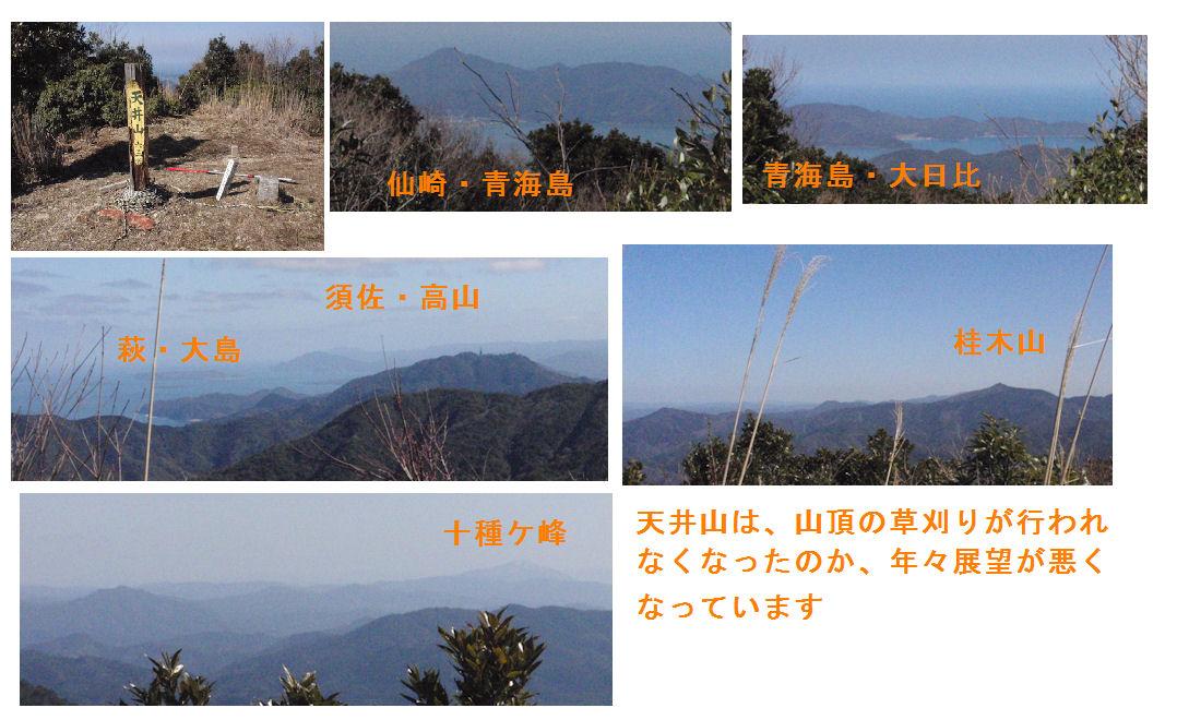 f:id:chuumeikun:20200919212251j:plain