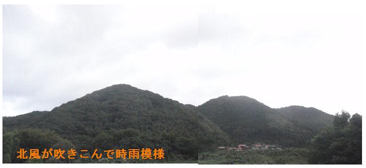 f:id:chuumeikun:20200927184105j:plain