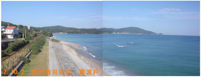 f:id:chuumeikun:20201003082340j:plain