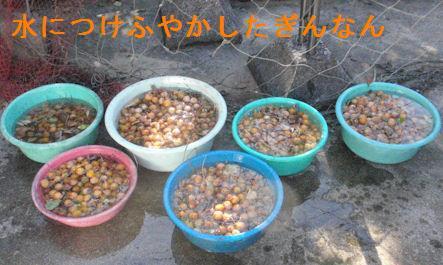 f:id:chuumeikun:20201003082427j:plain