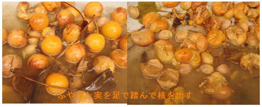 f:id:chuumeikun:20201003082523j:plain