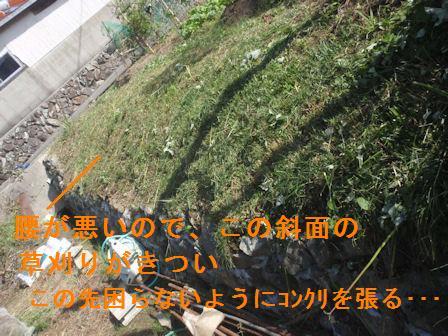f:id:chuumeikun:20201018193504j:plain