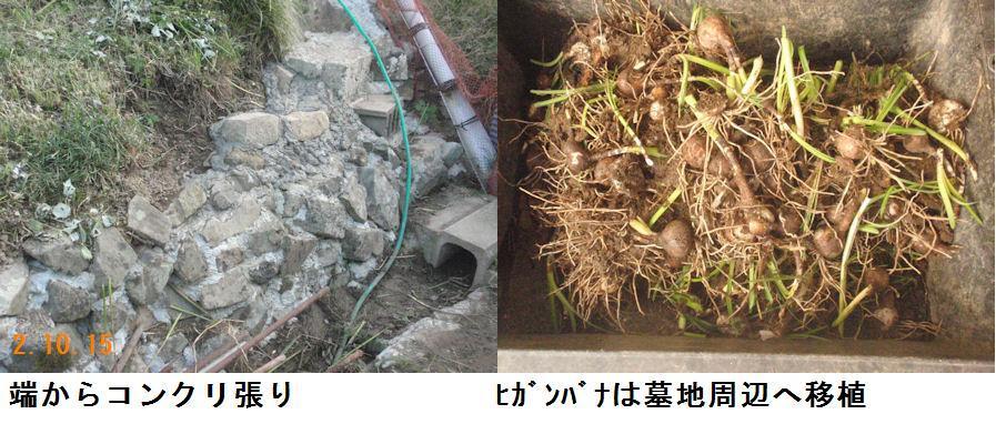 f:id:chuumeikun:20201018193858j:plain