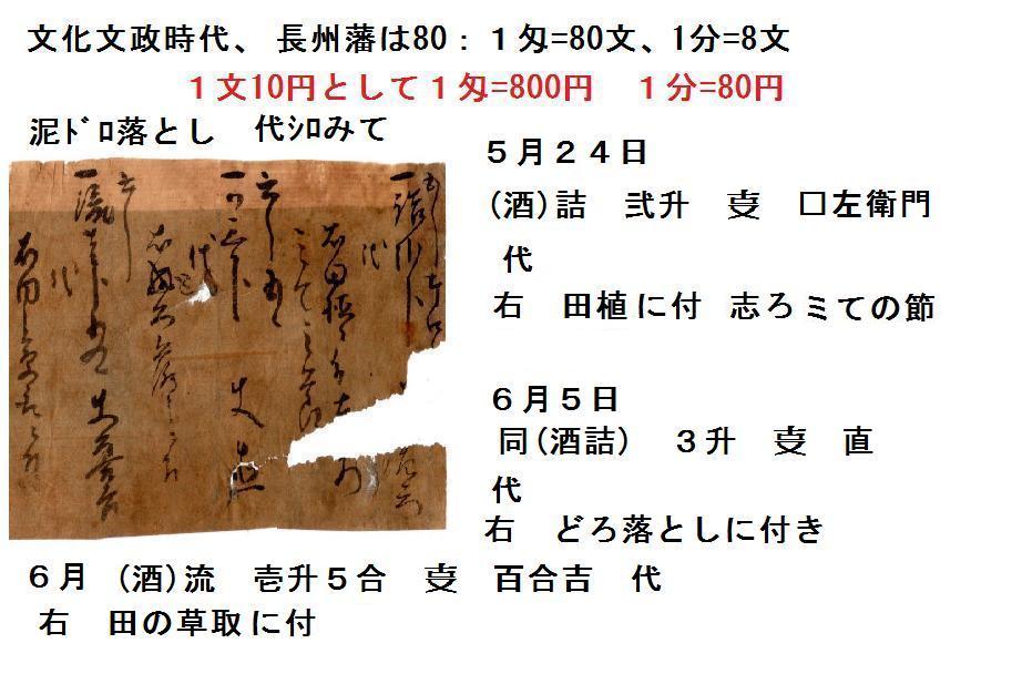 f:id:chuumeikun:20201113083720j:plain