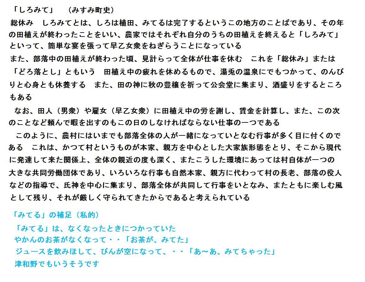 f:id:chuumeikun:20201203181544j:plain