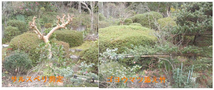 f:id:chuumeikun:20201220211004j:plain