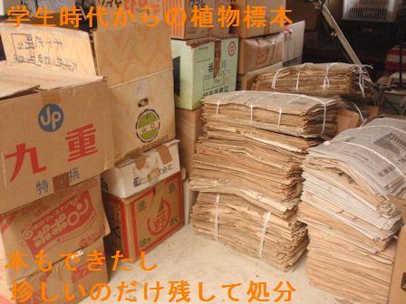 f:id:chuumeikun:20210127120227j:plain