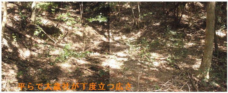 f:id:chuumeikun:20210412112238j:plain