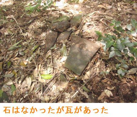f:id:chuumeikun:20210412112349j:plain