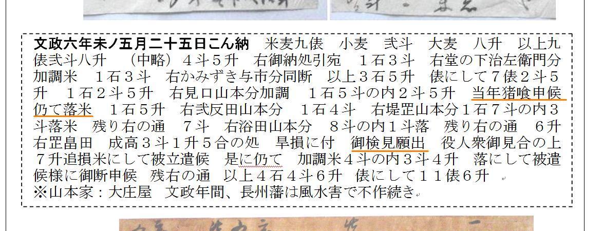 f:id:chuumeikun:20210413001718j:plain