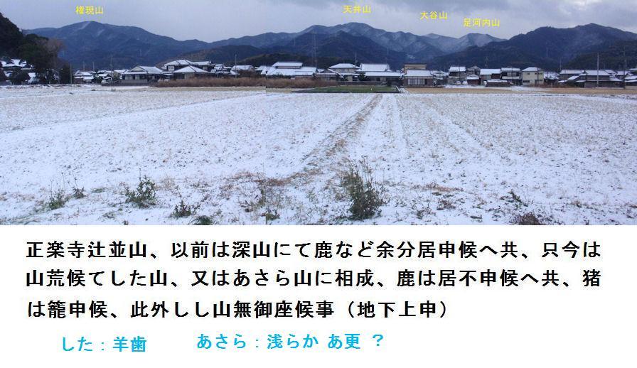 f:id:chuumeikun:20210413002206j:plain