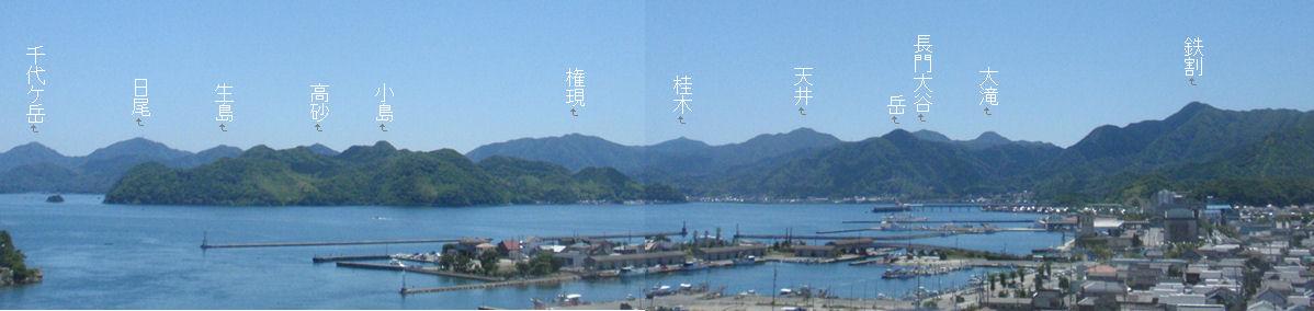 f:id:chuumeikun:20210413002711j:plain