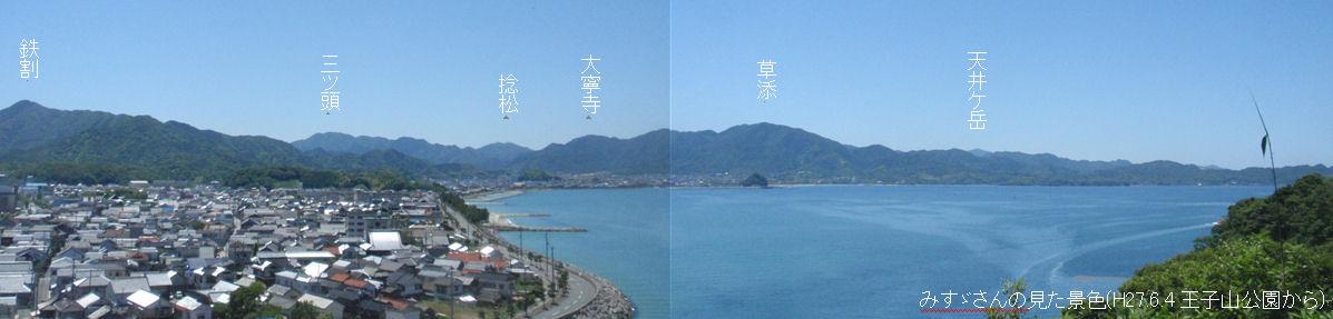 f:id:chuumeikun:20210413002733j:plain