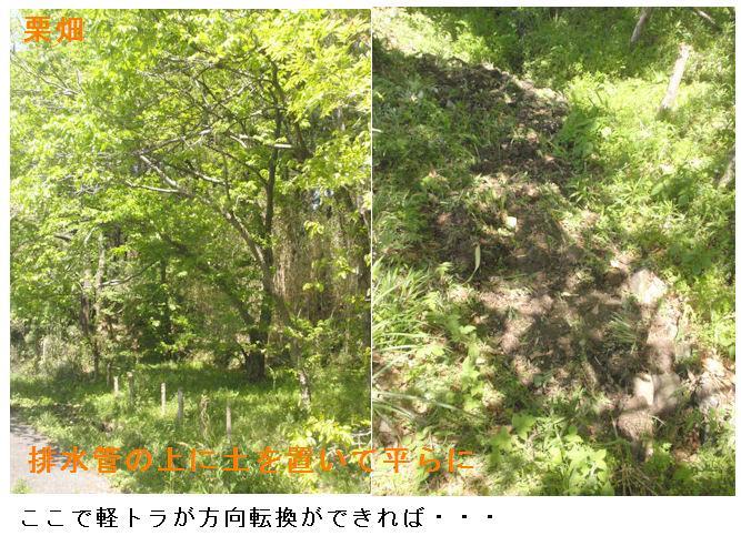 f:id:chuumeikun:20210420065737j:plain