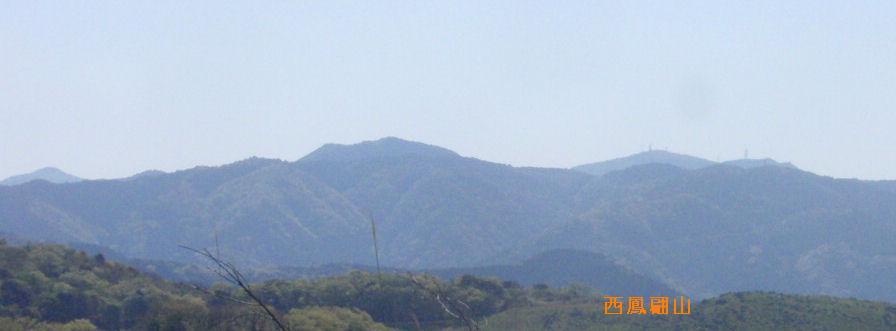 f:id:chuumeikun:20210421045317j:plain