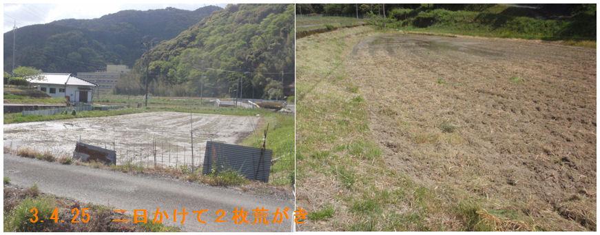 f:id:chuumeikun:20210426063310j:plain