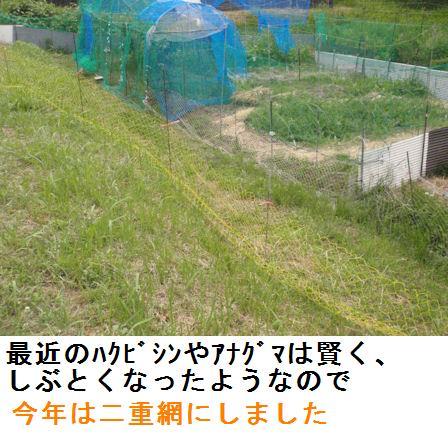 f:id:chuumeikun:20210606190950j:plain