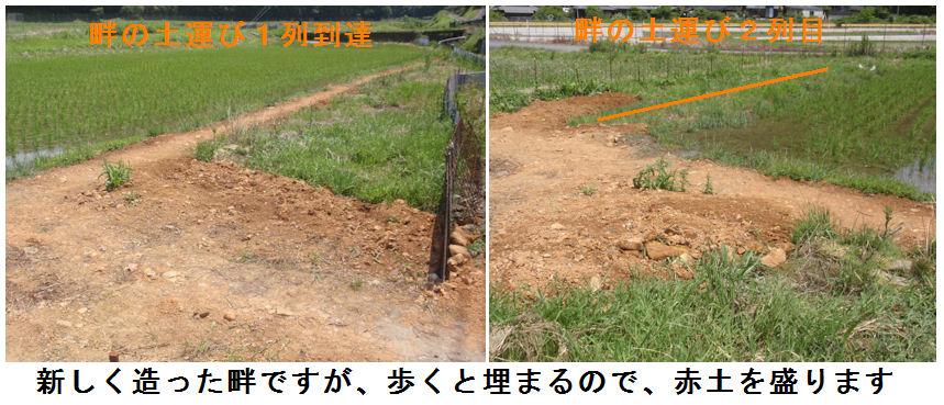 f:id:chuumeikun:20210609182639j:plain
