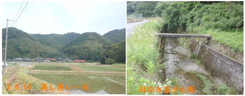 f:id:chuumeikun:20210614195238j:plain
