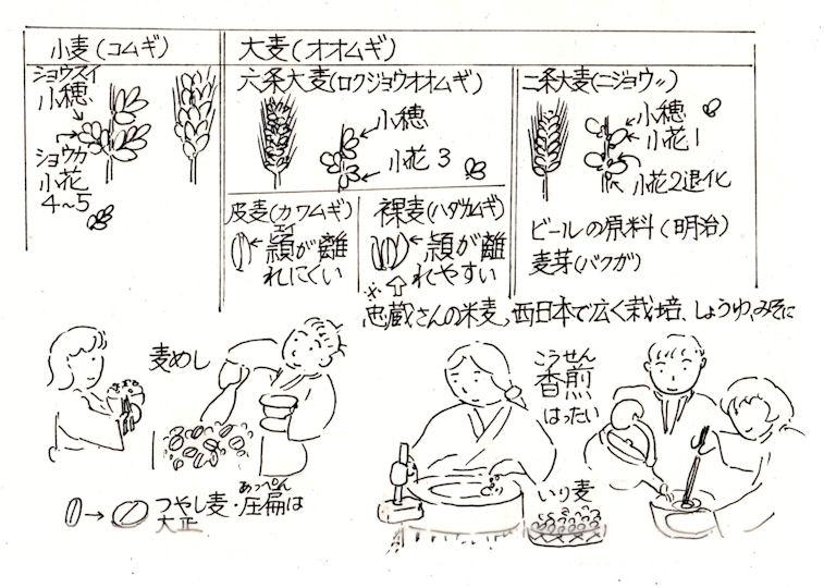 f:id:chuumeikun:20210709054811j:plain