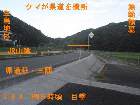 f:id:chuumeikun:20210804194228j:plain