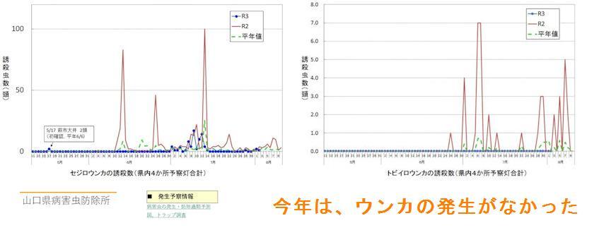 f:id:chuumeikun:20210831194537j:plain