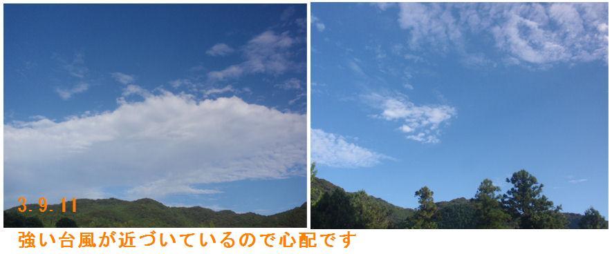 f:id:chuumeikun:20210911115550j:plain