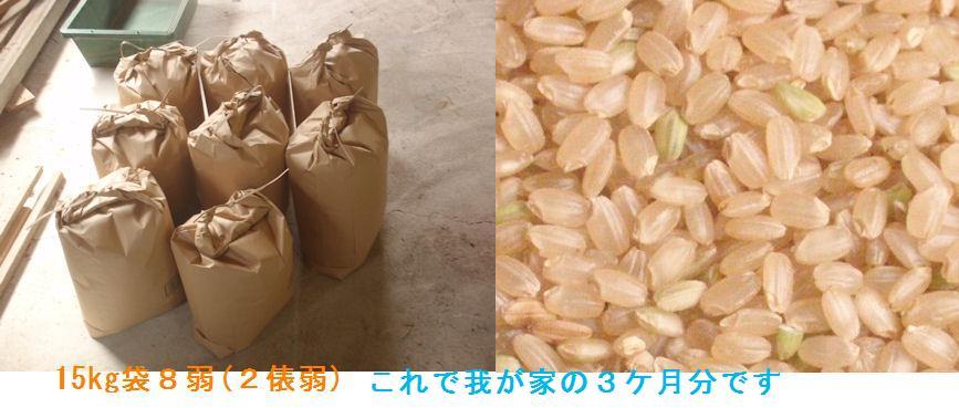 f:id:chuumeikun:20210912064139j:plain