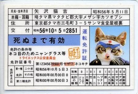 猫とPCケース 75台目 YouTube動画>14本 ->画像>1209枚