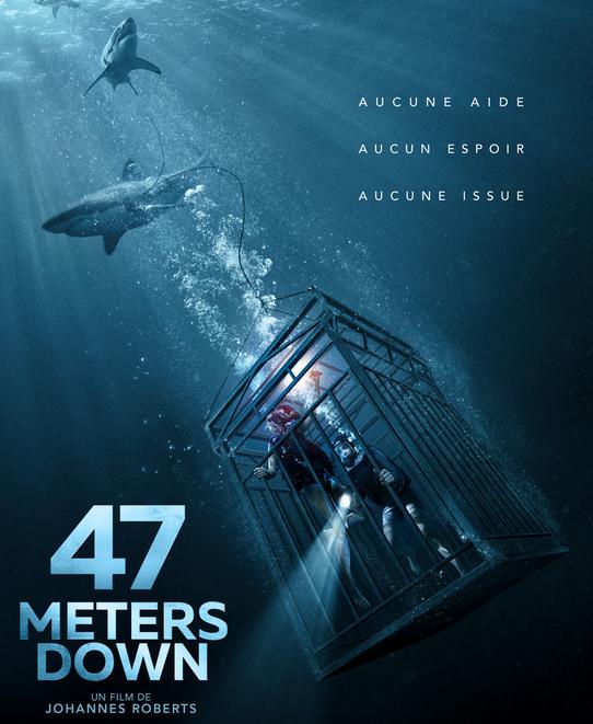 海底47mの檻が落ちるとこ