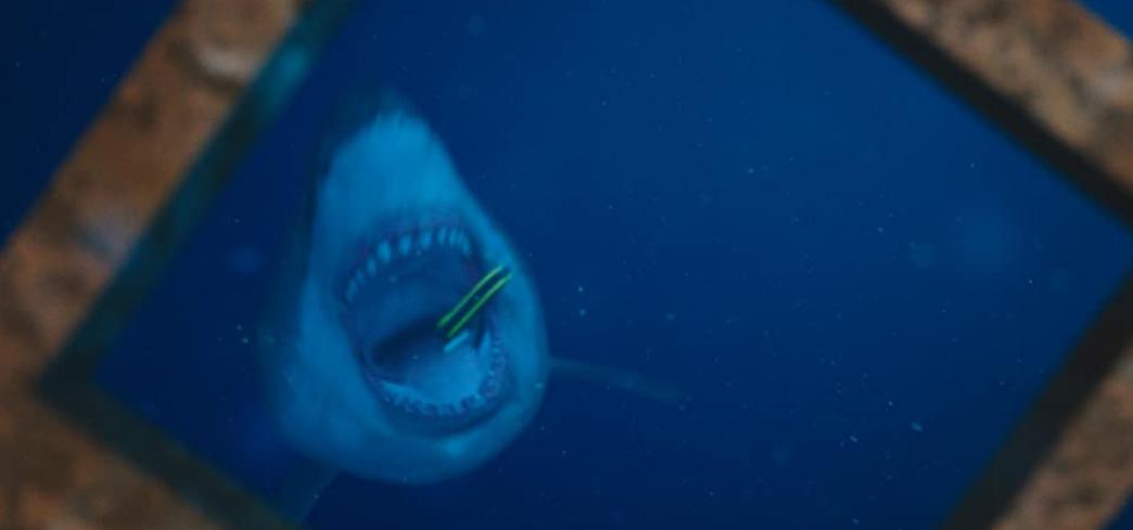 海底47メートルのサメ