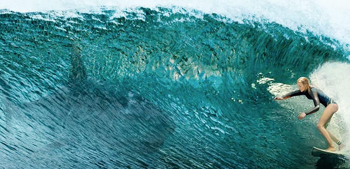 波乗り中のナンシーとサメの影