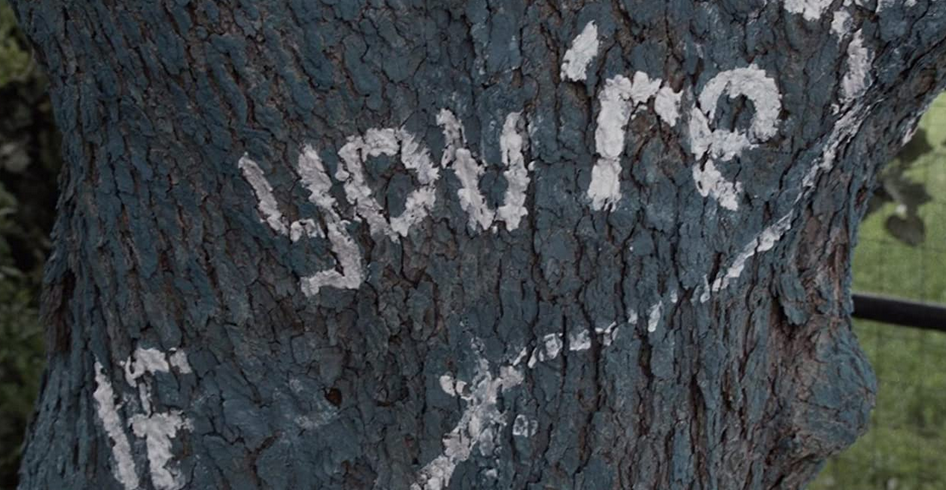 シーズン5第11話 木に書かれたメッセージ