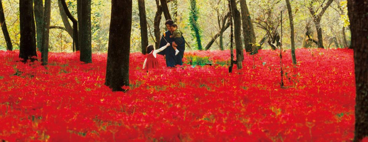 映画『人間失格』彼岸花の赤を強調した極彩色シーン