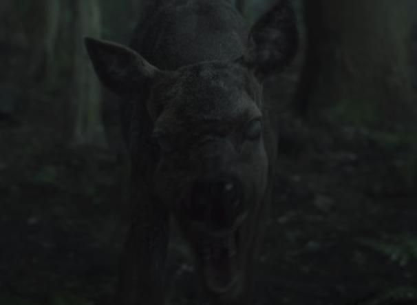 『キングダム:アシンの物語』のゾンビ鹿