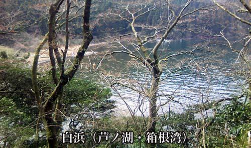 白浜(芦ノ湖・箱根湾)