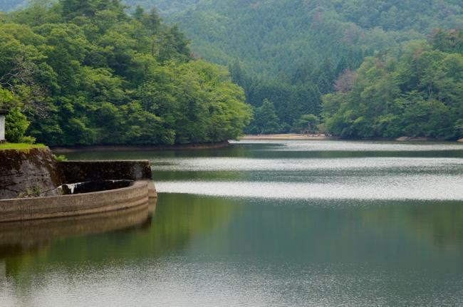 「滋賀県甲賀市甲南町杉谷:岩尾池」の画像検索結果